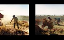 החיים בבוליביה, אסף רגב צילום, Living in Bolivia. Assaf Regev